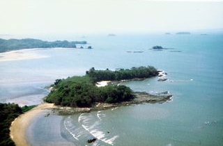 island_41