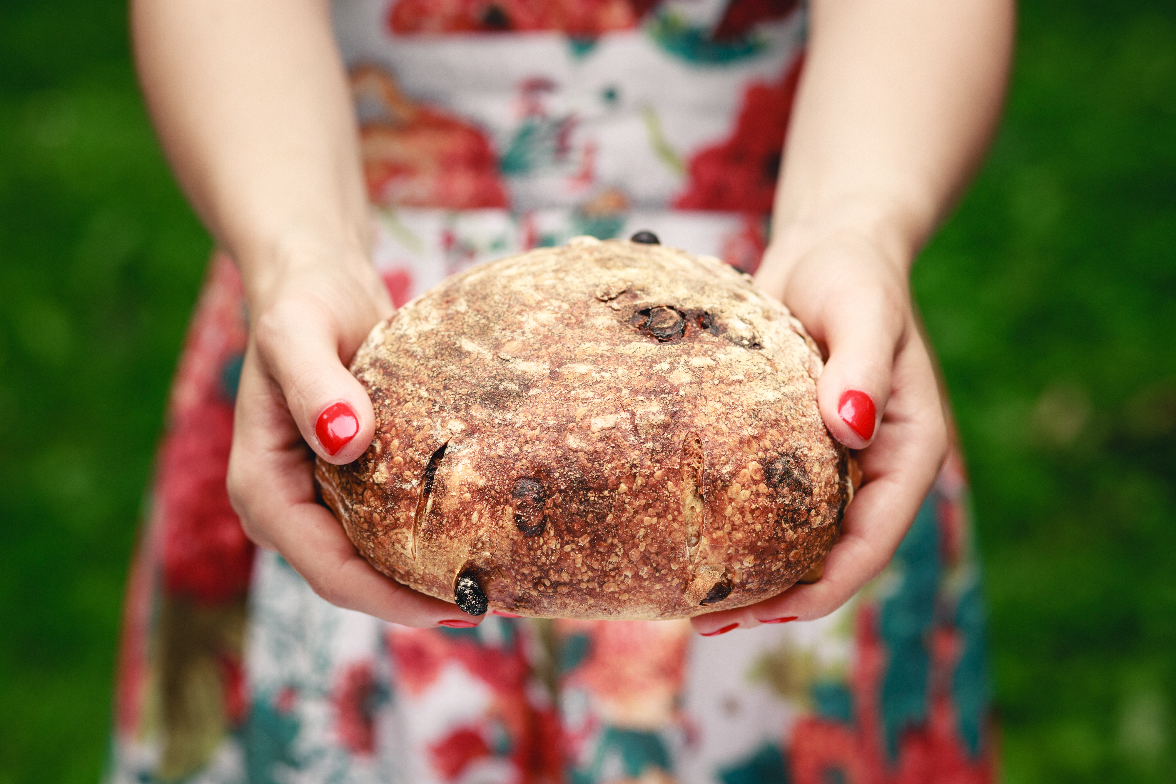 Close up of hands holding rustic bread. Photo with shallow depth of field.