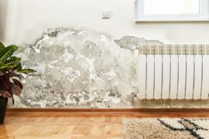What damp issues to look for before buying a house