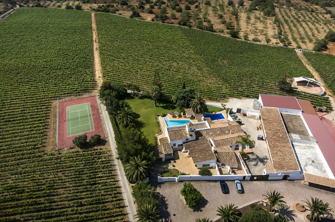 Summer holiday in the vineyard that produces Sir Cliff Richard's wine!