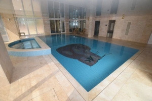 What a knockout! Amir Khan's Bolton mansion for sale